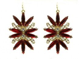 Crystal_Earrings_5253893976011
